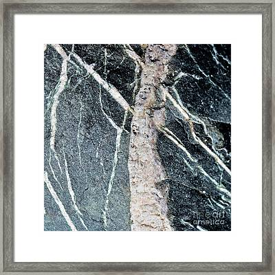 Coastal Collection 0030 Framed Print by Ron Evans