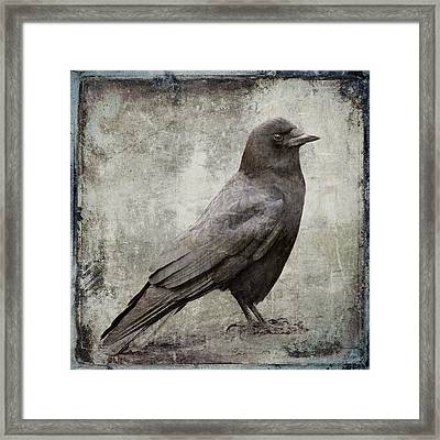 Coastal Crow Framed Print