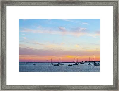 Coastal Daze Framed Print