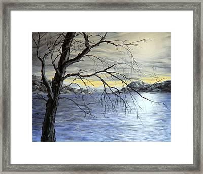 Coastal Evening Framed Print