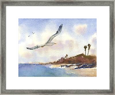 Coastal Flight Framed Print by Amy Kirkpatrick