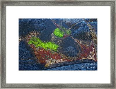 Coastal Floor At Low Tide Framed Print by Heiko Koehrer-Wagner