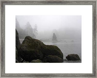 Coastal Fog Framed Print by Ty Nichols