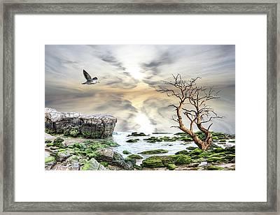 Coastal Landscape  Framed Print