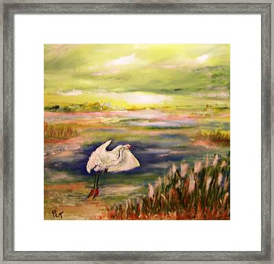Coastal Marsh With White Heron Framed Print by Patricia Taylor