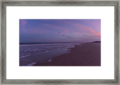 Coastal Patrol Framed Print