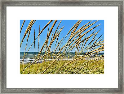 Coastal Relaxation Framed Print