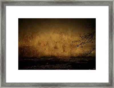 Coastal Santos Framed Print by Valmir Ribeiro