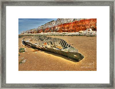 Coastal Skeleton Framed Print by David Birchall