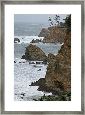 Coastal Storm Framed Print by Laddie Halupa