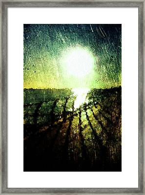 Coastal Sunset Framed Print