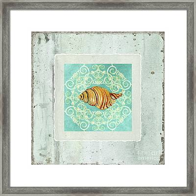 Coastal Trade Winds 5 - Driftwood Clandestine Triton Seashell Scrollwork Framed Print by Audrey Jeanne Roberts