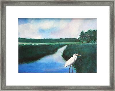 Coastal Wetlands Framed Print