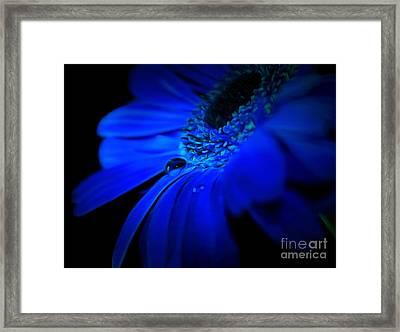 Cobalt Blues Framed Print by Krissy Katsimbras