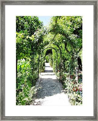 Cobble Stone Garden Walkway In Spain Framed Print