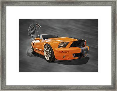 Cobra Power - Shelby Gt500 Mustang Framed Print
