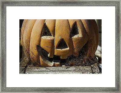 Cobweb Pumpkin Framed Print by Garry Gay