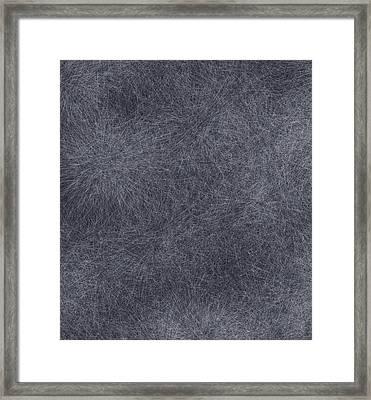 Cobwebs Framed Print by Dan Sproul