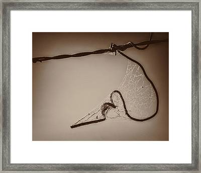 Framed Print featuring the photograph Cobwebs On My Heart by Mary Hone