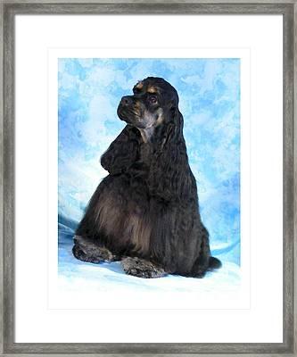 Cocker Spaniel 405 Framed Print by Larry Matthews