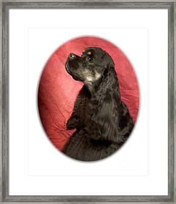 Cocker Spaniel 477 Framed Print by Larry Matthews