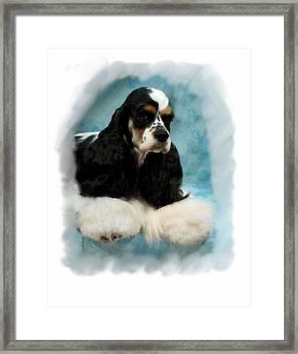 Cocker Spaniel 814 Framed Print by Larry Matthews