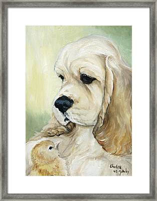 Cocker Spaniel And Chick Framed Print