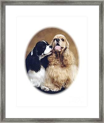 Cocker Spaniels 5102 Framed Print by Larry Matthews