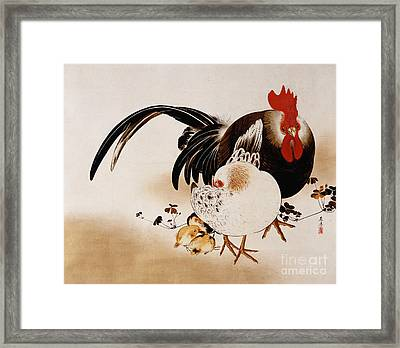 Cockerel, Hen And Chicks Framed Print by Shibata Zeshin