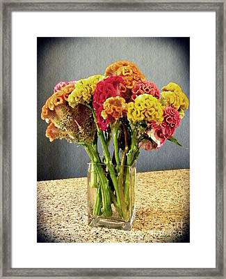 Framed Print featuring the photograph Cockscomb Bouquet by Sarah Loft