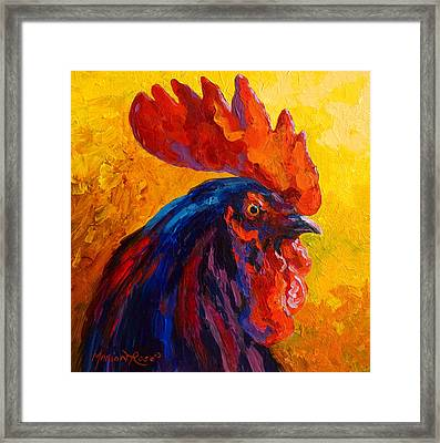 Cocky - Rooster Framed Print