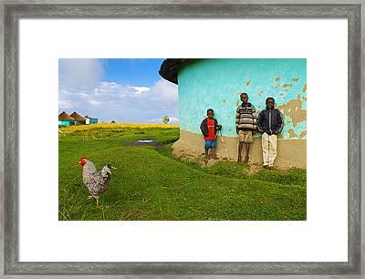Cocky Framed Print by Skip Hunt