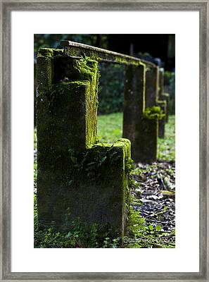 Cocoa House Pillars Framed Print by Sarita Rampersad