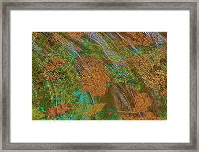 Framed Print featuring the photograph Cocoa's Pool by Sherri Meyer