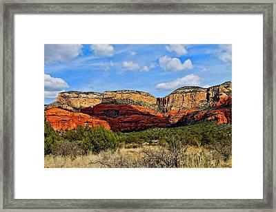 Coconino Forrest # 44 Framed Print