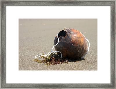 Coconut Beach Framed Print by Jez C Self