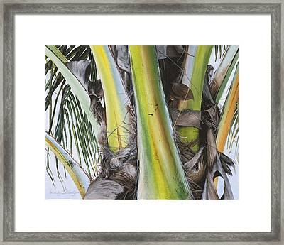 Coconut Branches Framed Print by Wendy Ballentyne
