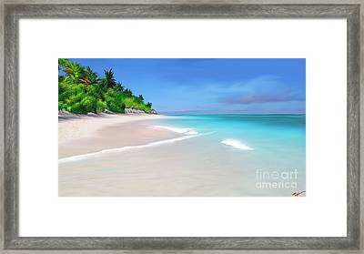 Coconut Cove Framed Print by Anthony Fishburne