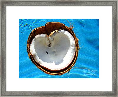 Framed Print featuring the photograph Coconut Heart by Jaison Cianelli