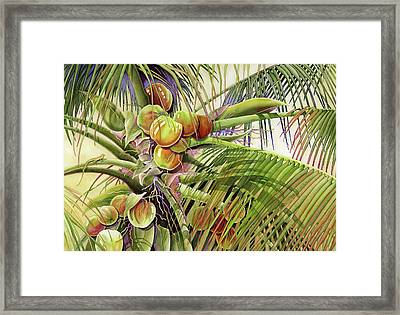 Coconut Palm Framed Print
