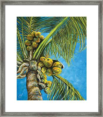 Coconut Palm Framed Print by Tammy Olson