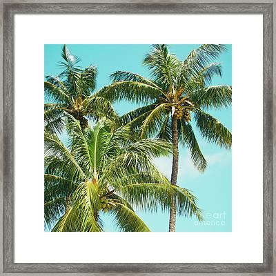 Coconut Palm Trees Sugar Beach Kihei Maui Hawaii Framed Print by Sharon Mau