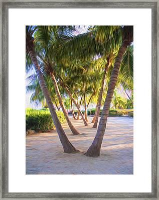 Coconut Palms Inn Beachfront Framed Print