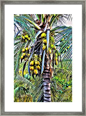 Coconut Tree Framed Print by Carey Chen