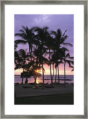 Coconut Trees Silhouetted On Mauna Lani Framed Print by Richard Nowitz