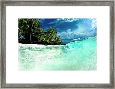 Coconut Water Framed Print by Sean Davey