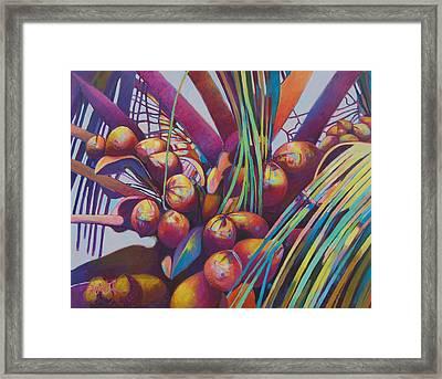 Coconuts Closeup Framed Print