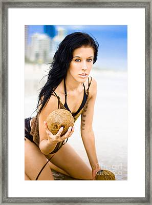 Coconuts In Paradise Framed Print by Jorgo Photography - Wall Art Gallery