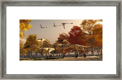 Coelophysis Hunting Framed Print by Corey Ford