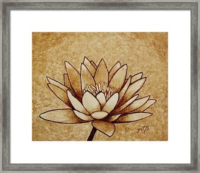 Coffee Painting Water Lilly Blooming Framed Print by Georgeta  Blanaru